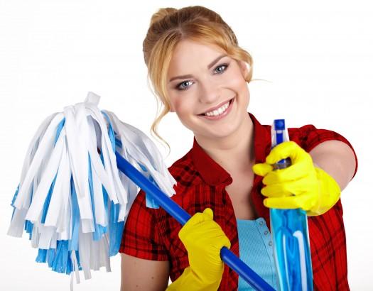 dagelijks-schoonmaak_26679416_l_bewerkt